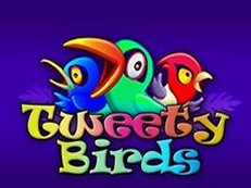 tweety birds