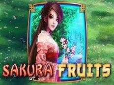 sakura fruits